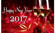HAPPY NEW YEAR 2017  - is the wish  team PACIFIST JOURNAL for you!! Much HAPPINESS,  HEALTH and PEACE of course