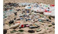 Governo brasileiro adere à campanha Mares Limpos da ONU Meio Ambiente
