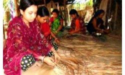 গ্রামের নারীরা শীতল পাটি প্রস্তুত করছে / google