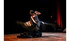 ملحمة فنية تمزج الموسيقى المغربية بالفلامنكو في مسرح محمد الخامس