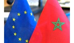 اللجنة المشتركة تواصل ديناميتها بالبرلمان الأوروبي