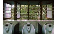 جمعية تدعو إلى جعل توفير المراحيض العمومية أولوية بالمغرب