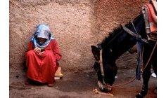 """""""ما نقص مال من صدقة"""" .. مبادرة مغربية تحفز نشر العمل الإنساني"""