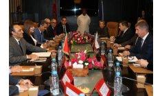 التشيك تثمن دعوة الملك إلى الحوار مع الجزائر