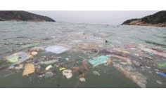 Discarded gloves and masks are becoming a new source of ocean pollution