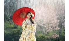 The Japanese 5s method to harmonize your life