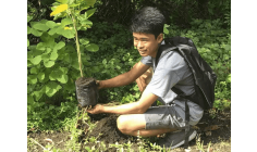 Philippines approves law requiring students to plant 10 trees to graduate
