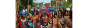 Ten Brazilian cities will be managed by indigenous mayors in 2021