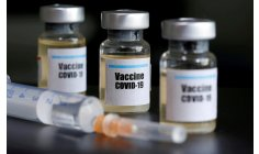 National schedule foresees vaccination against covid-19 within five days after permission  Anvisa