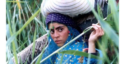 Tip: 15 precious films for you to know Iranian cinema