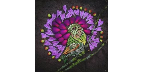 Artist uses leaves and flower petals to create beautiful representations of birds