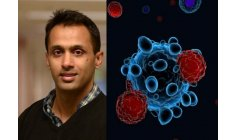 Scientists develop proteins that trick and inactivate Covid
