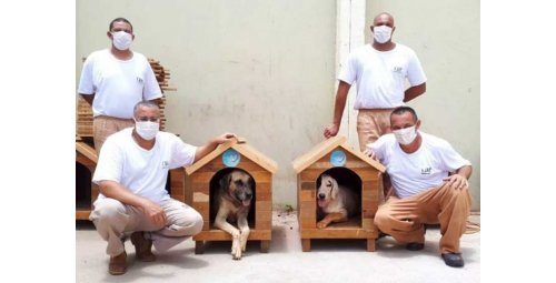Inmates turn rubble into huts for abandoned dogs in SP