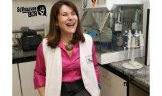 USP scientists create treatment with Zika virus against cancer and seek support