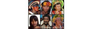 Indigenous holocaust during the Brazilian military dictatorship