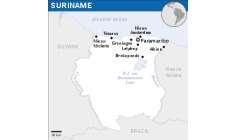 Illegal logging causes damage and causes destruction in Suriname