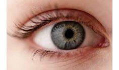 Scientists restore sight of blind patient with algae genes