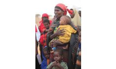 UN: Hunger already affects 246 million Africans