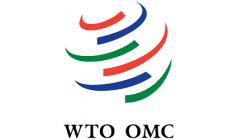 Understand how the World Trade Organization works