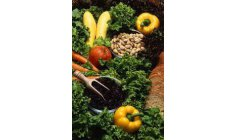 Research shows nutrition that strengthens the body and reduces the risk of coviding